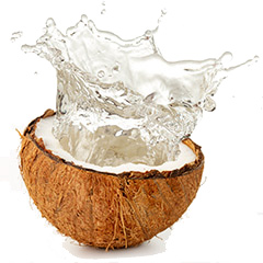 Coconut-Water 1
