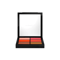 MAC Pro Lip Palette 6 Editorial Oranges